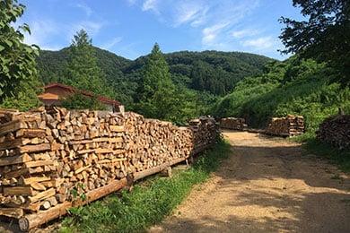 東北の森から明日を考える―木質バイオマスで拡がるエネルギー自立の試み